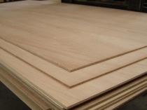 18mm BC Ext Hardwood